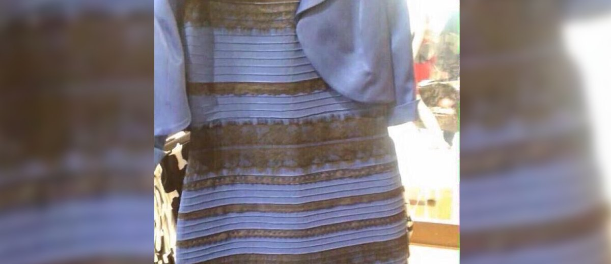 What Color Is That Dress Celebrities Set The Record Straight