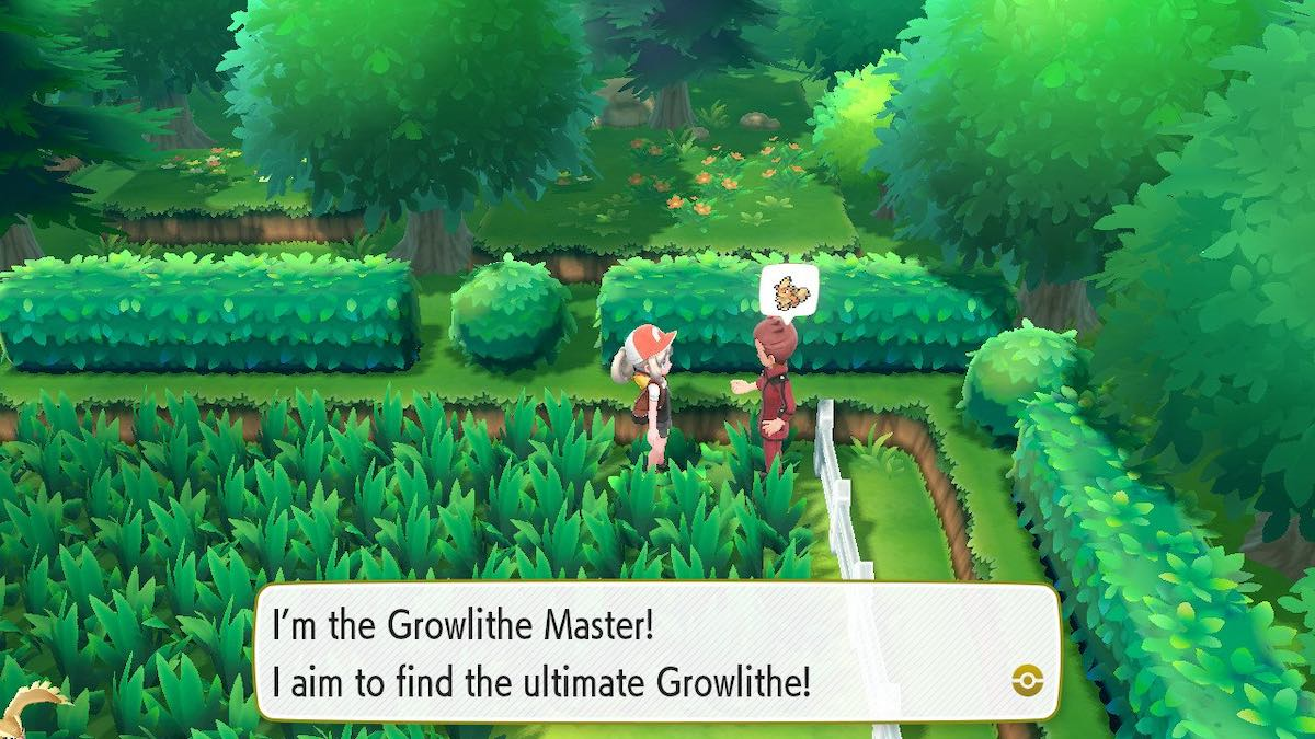 Growlithe Master Trainer location