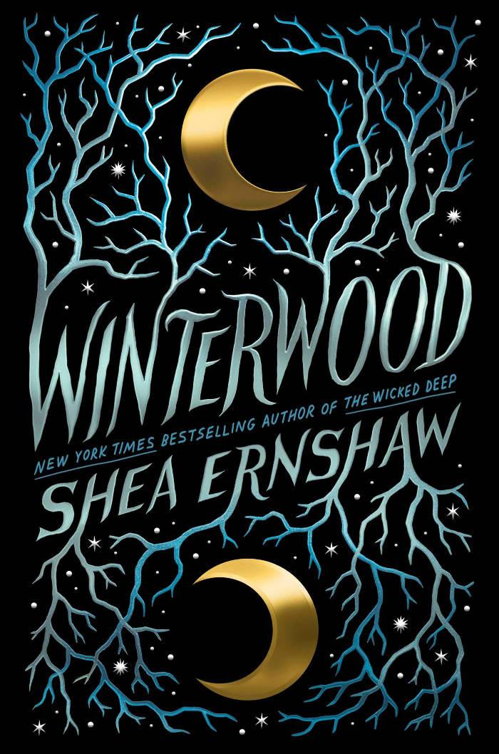 standalone ya fantasy winterwood