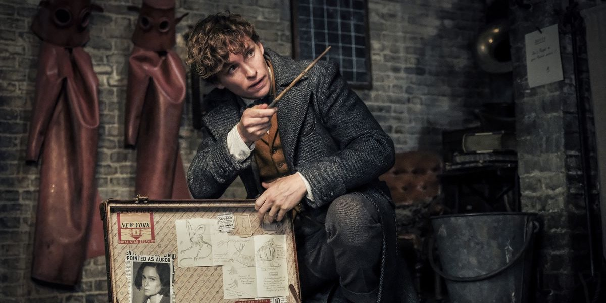 fantastic beasts video game newt